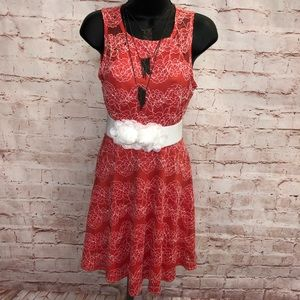 Pink owl apparel lace dress NWT small